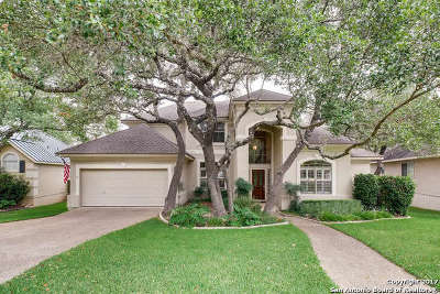 Boerne Single Family Home New: 29223 Oakview Bnd