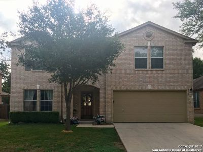 San Antonio Single Family Home New: 24314 Haeli Park