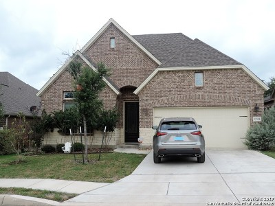 Boerne Single Family Home New: 27115 Smokey Chas