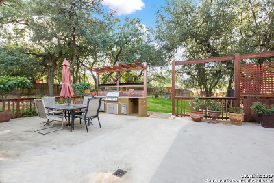Helotes Single Family Home For Sale: 203 Cavayo Trl
