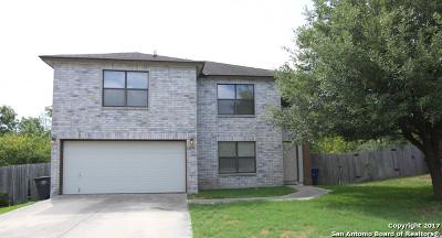 San Antonio Single Family Home New: 12110 Blossom Holw