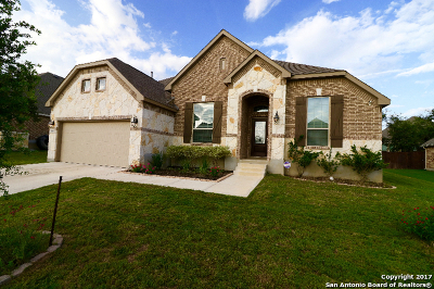 San Antonio Single Family Home New: 810 Gold Beauty
