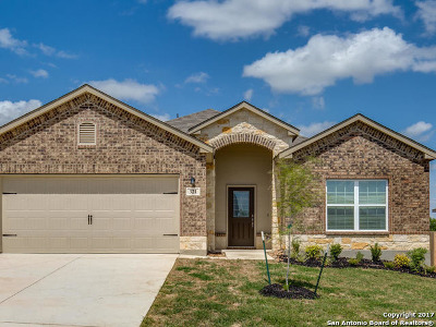 New Braunfels Single Family Home New: 321 Frenchi Way