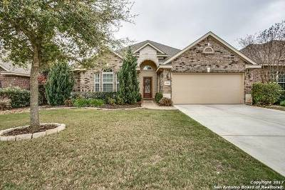 Helotes Single Family Home New: 10608 Newcroft Pl
