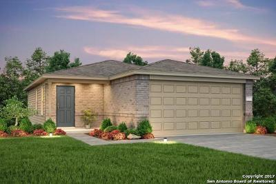 Helotes Single Family Home For Sale: 11758 Silver Sky