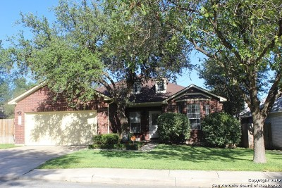 San Antonio Single Family Home New: 12919 Legend Cave Dr