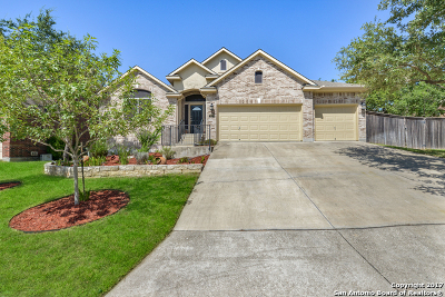 Stonewall Ranch Single Family Home New: 423 Sand Ash Trl