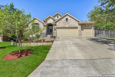 San Antonio Single Family Home New: 423 Sand Ash Trl
