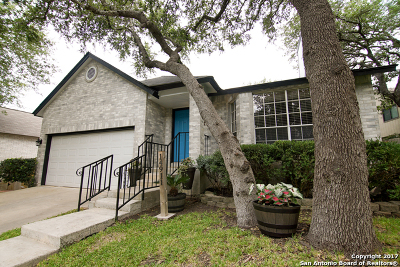 San Antonio TX Single Family Home New: $288,000