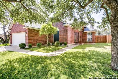San Antonio TX Single Family Home New: $254,990