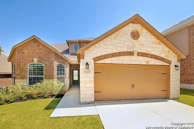 Comal County Single Family Home New: 6169 Daisy Way