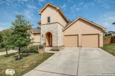 Bexar County Single Family Home New: 18711 Edwards Edge