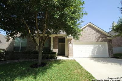 San Antonio Single Family Home New: 10011 Ramblin River Rd