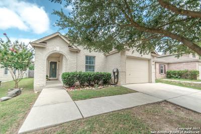 San Antonio Single Family Home New: 10715 Terrace Pln