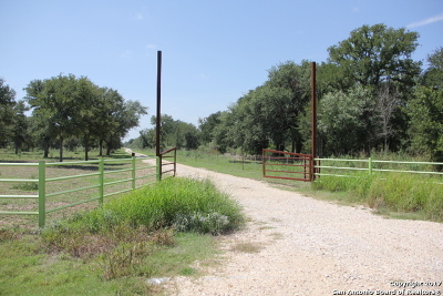 Guadalupe County Farm & Ranch For Sale: 1817 Hartfield Rd