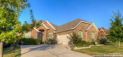 Cibolo Single Family Home New: 6053 Covers Cove