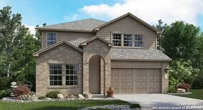 Bexar County Single Family Home New: 5943 Bridle Bend