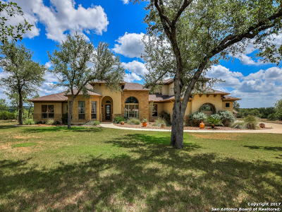 Kendall County Single Family Home New: 98 Llano Ct