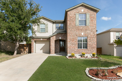 Bexar County Single Family Home New: 8102 Cavern Hl