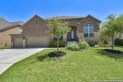 San Antonio Single Family Home New: 25842 Raven Rdg