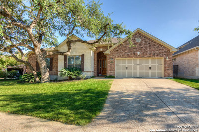 Bexar County Single Family Home New: 1254 Bluemist Bay