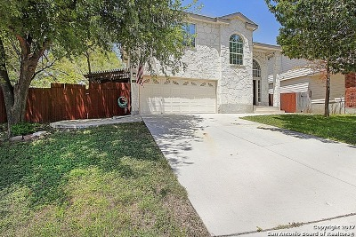 Bexar County Single Family Home New: 10739 Tiger Grv
