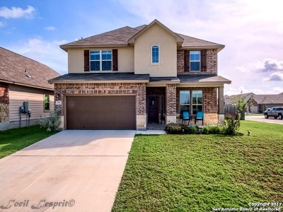 Comal County Single Family Home New: 722 Stratus Path