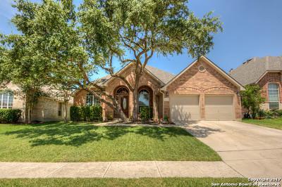 Helotes Single Family Home New: 15723 Alamogordo
