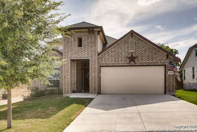 Guadalupe County Single Family Home New: 2078 Castleberry Rdg