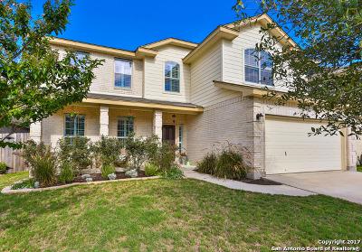 Bexar County, Medina County Single Family Home New: 24727 Wine Rose Path