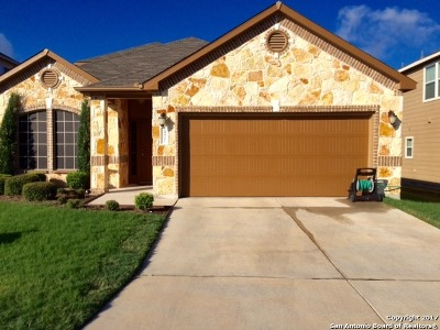 San Antonio Single Family Home New: 24907 Terlingua Bnd