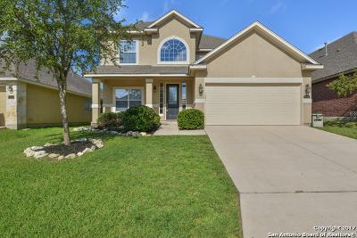 Bexar County, Medina County Single Family Home New: 24439 Buck Crk