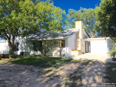 Guadalupe County Farm & Ranch For Sale: 1535 Hoffman Rd