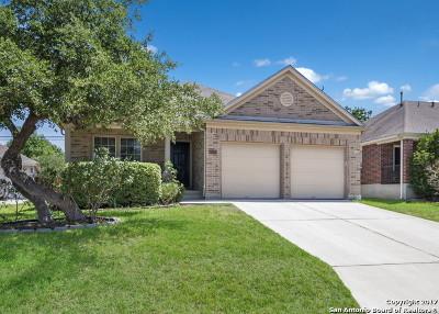 San Antonio Single Family Home New: 22014 Prospect Hl