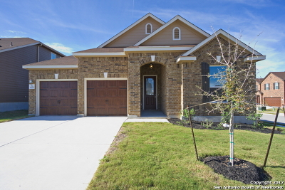 Cibolo Single Family Home New: 421 Landmark Way
