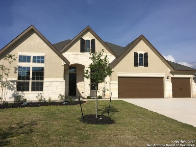 Fair Oaks Ranch Single Family Home New: 8008 Cibolo Vly