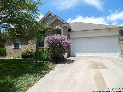Comal County Single Family Home For Sale: 1035 Running Riv