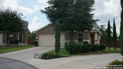 San Antonio Single Family Home New: 21503 Riverton Rise