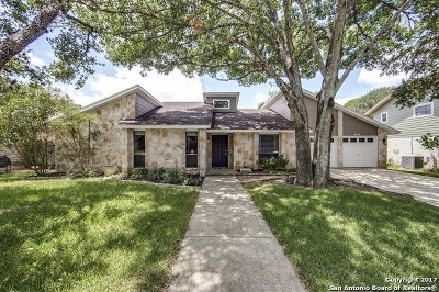 San Antonio Single Family Home New: 2438 Blue Quail St
