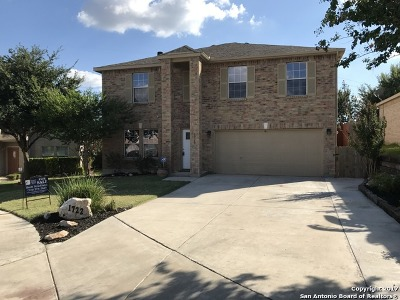 San Antonio Single Family Home New: 1722 Lilac Mist