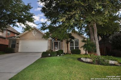 San Antonio Single Family Home New: 418 Cypress Trl