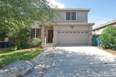 San Antonio Single Family Home New: 2923 Encino Riv