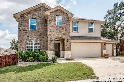 San Antonio Single Family Home New: 2734 Tuscan Cyn