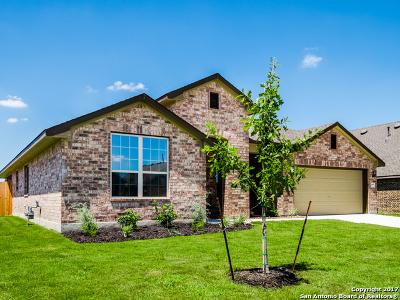 San Antonio Single Family Home New: 646 Ridgelawn Drive