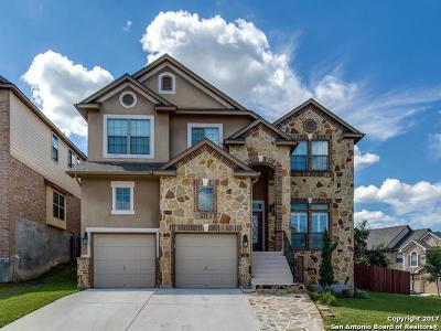 San Antonio Single Family Home New: 347 Chloe Hts