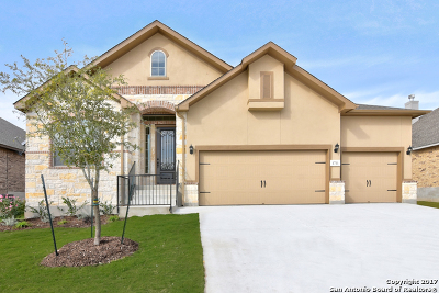 San Antonio TX Single Family Home New: $419,990