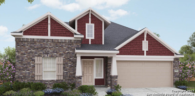 Boerne TX Single Family Home New: $310,120