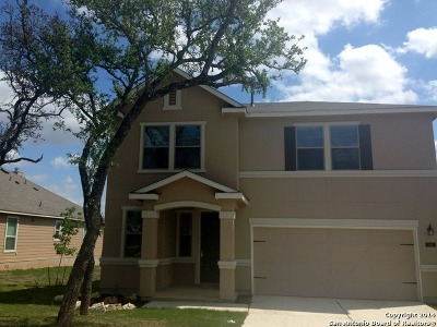 Boerne TX Single Family Home New: $299,900