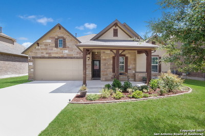 Guadalupe County Single Family Home For Sale: 2047 Pecan Bend