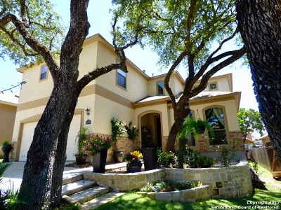 Boerne Single Family Home For Sale: 8730 Gelvani Grv
